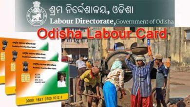 Photo of Labour Card Online Apply Odisha श्रमिक वार्ड कैसे बनाये ओडिशा में