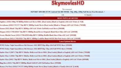Photo of SkyMoviesHD 2021 – Download Bollywood, Hollywood, Dual Audio Movies- About